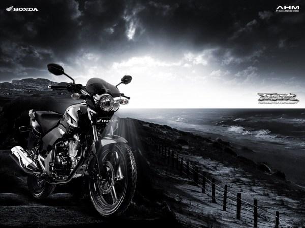 800x600-tiger-revo