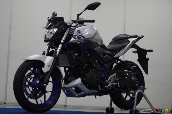 Yamaha MT-25. Pic by TMCBlog